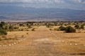 Tortilis Camp Airstrip Is Wide Open