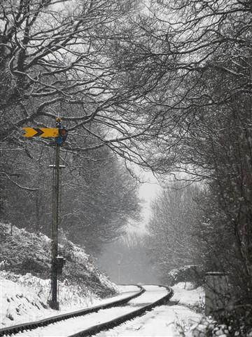 Snowy Rails