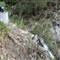 P1060304_waterfall gully_20100411_23