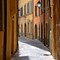 Pisa side street
