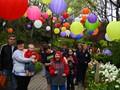 DSCN1731 Balloon Festival, Utah