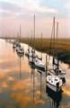 the sailboats of morgans creek