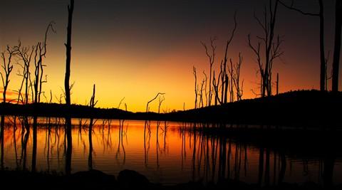 harvey dam 2013