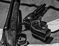 Handgun for Sale