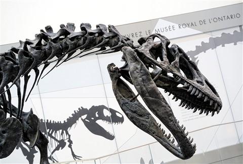 In prehistoric company
