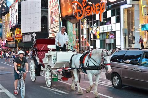 NewYork transportation means
