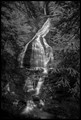 Moss Glen Falls II