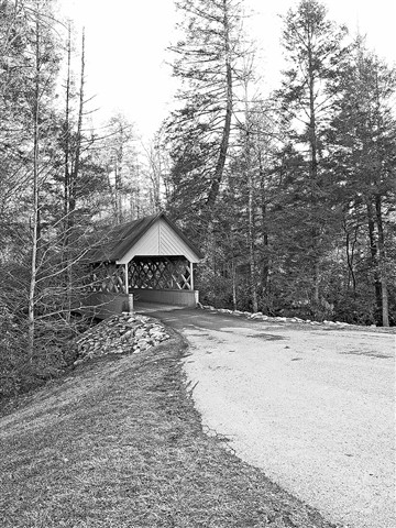 Covered Bridge_brae#4