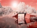 Infra Red Bridge