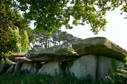 Dolmen (Kerbalanec, Brittany, France)