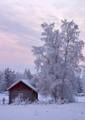 A cold cabin