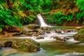 rio seco waterfall Trinidad & Tobago
