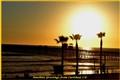 Beach @ Carlsbad, CA