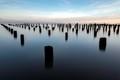 Morning Pillars