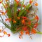 Pusha&flowers