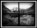 the view from the hut bw