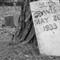 Dub Davis B&W Harris Blvd Cemetery P1090344DNG Conversion
