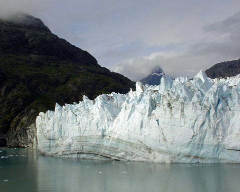 Alaska Glacier Bay Pic 1