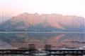 Dal Lake - Srinagar - Kashmir