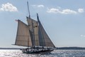 The Lady Maryland is a replica of a Chesapeake Bay pungy schooner, a boat which sailed the Bay in the 1800's.
