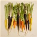 Organic Rainbow Carrots