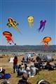 Kites, Berkeley, Ca