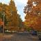 autumn_streets_6