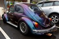 Beetle 130512