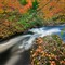 Autumn At Eel Brook
