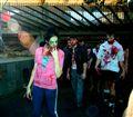 Daylight Zombie