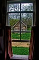 Through the Windowpane