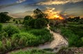 Curtis Creek Sunset