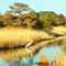 Chincoteague Marshland