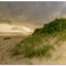 outerbanks_9913_50pct