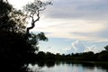 twilight in the Pantanal