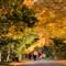 x_burian_Autumn_WALK
