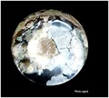 Pluto aged