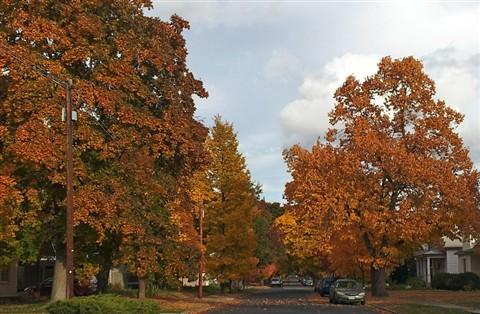 autumn_streets_5
