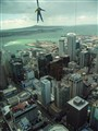 Left Dangling in Auckland