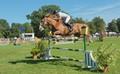 Rennes, international horse jumping challenge