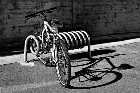 IMGP7375 Rad Schatten