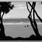 beach bw1