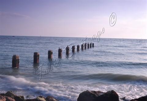 Tampa2013- at Beach