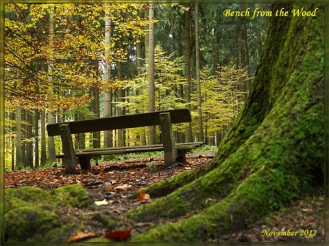 Bench from the Wood