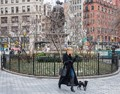 walking the dog in Madison Square Park, NYC