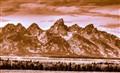 Majestic Tetons