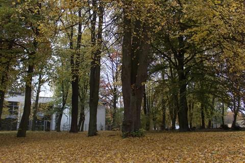 Poljska 24.10.2012. IMG_5938