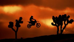 Moto Cross in Mojave Desert Captured in Mid-Flight