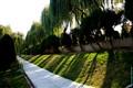 Harmonies of trees