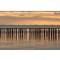 Polder Posts at Sunset